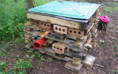 2015-June 14th-Work day-Making a bug hotel.
