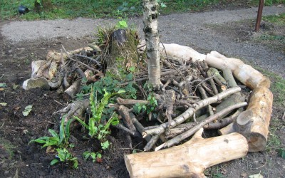 2015- September 9th. – Constructing a wood pile.