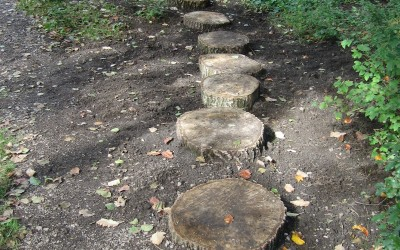 2015- September 15th.- Wooden Stepping Stones.