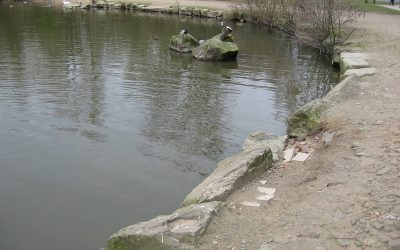 2016-March- Repairs to the lake edge.