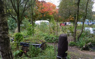 2017 – September – Autumn comes to the Wildlife Garden.